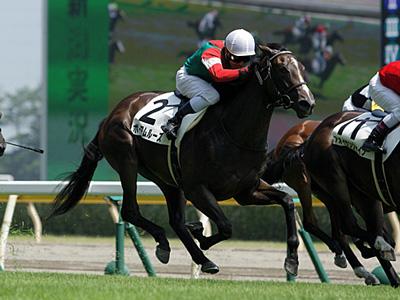 ユニオン提供馬
